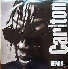 "CARLTON ~ Cool With Nature REMIX ~ 12"" Single PS"