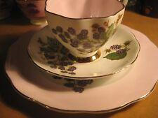Vintage Queen Anne Bone China England Blackberry Fruit pink Teacup Saucer Plate