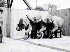 CIRCUS VINTAGE PHOTO TROOP ELEPHANT TRUNK NASHUA USA ART PRINT POSTER BB7726