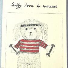 Ditty Bops Ruffy Loves To Exercise Book Amanda Barrett Abby DeWald Teddy Bear