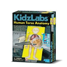 KIDZ LABS HUMAN TORSO ANATOMY - KIDS HUMAN BODY SCIENCE & ACTIVITY KIT 4M TOYS