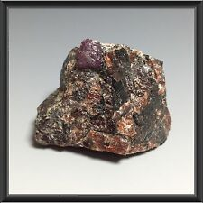 Rough natural Ruby Winza 50.38g - 42 x 33 x 29mm
