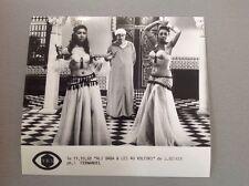 """FERNANDEL dans """" ALI BABA ET LES 40 VOLEURS """"  - PHOTO DE PRESSE 15x18cm"""