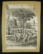 Le chêne de Zeus à Dodone dans des dodonéens gravure c1600  Δωδώνη / Dôdốnê