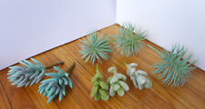 Set of 8 Pieces Mini Artificial Flocking Grass Plants (Gray)