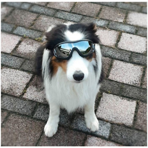 Dog Goggles UV Sun Glasses Pet Sunglasses Water Resistant Windproof Eye Protect
