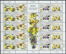 Serbia 2015 Flowers - Flora, Sheet with central vignette, MNH