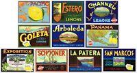 *Original* SAN MARCOS Santa Barbara Goleta AUTHENTIC Lemon Label NOT A COPY!