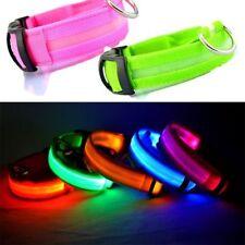 NEW LED Glow Collar Dog Puppy Pet Tag Flashing Light Safety Nylon leash harness