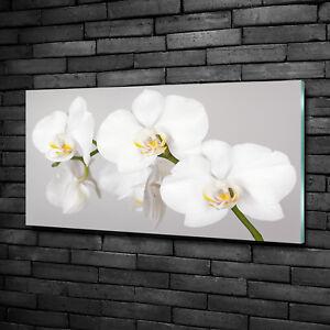 Glasbild Wandbild GLX12582457632 Steine Orchidee 125 x 50cm