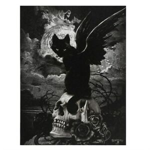 NINE LIVES OF POE ALCHEMY GOTHIC SMALL CANVAS PICTURE ART PRINT BLACK WING CAT
