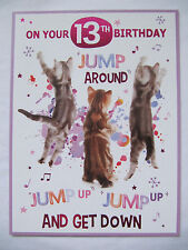 JUMP AROUND JUMP UP JUMP UP AND GET DOWN ON YOUR 13TH BIRTHDAY GREETING CARD