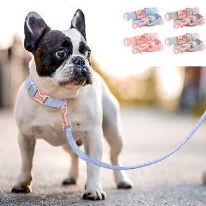 Adjustable Nylon Dog Collar and Lead Set Persoanalised Dog Name ID Buckle Collar