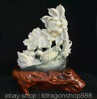 """16,8""""Chine Naturel Xiu Jade Jadeite Sculpté cygnus Oiseaux Lotus Feuille Statue"""