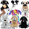 """DOG MAKING KITS - build stuff your own teddy bear - no sewing - (20cm/8"""" )"""