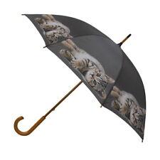 Regenschirm Katze liegend Stockschirm Regenschirme Schirme grau Geschenk Damen