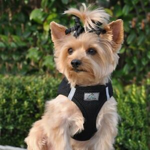 CHOKE FREE PET DOG REFLECTIVE STEP IN ULTRA HARNESS  BLACK Small
