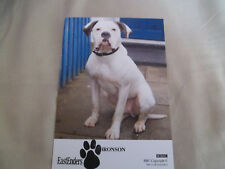 EASTENDERS CAST CARD BRONSON THE DOG SIGNED