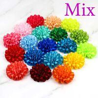 "DIY 20 Pcs 2"" Mix Ribbon Flowers Bows Carnation Sewing Appliques Craft Supplies"