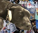 Buddha's Beats