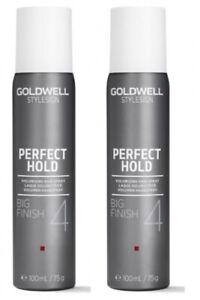 StyleSign PERFECT HOLD Big Finish 2x 100 ml (= 200 ml0.2 ml (74,85€  / 1 ml)
