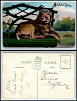 "VINTAGE Postcard-Dog Laying on Park Bench Hat & Smoking Pipe ""A Quiet dream"" M39"
