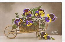 Flowers Postcard - Pansies in A Wicker Wheel Barrow   SL142