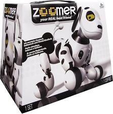 Zoomer Roboter