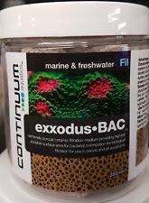 250ML CONTINUUM EXXODUS BAC CUBES Bio Filter Media For Aquariums / Ponds