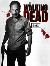 The Walking Dead poster : Andrew Lincoln poster : 12 x 17 inches