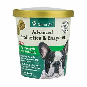NaturVet Advanced Probiotics Enzymes Plus Dog Soft Chew 70 count