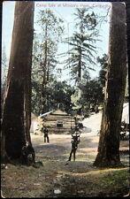 SIERRA MADRE CA~1900's CAMP LIFE AT WILSON'S PEAK ~ TREE SWING !  CABIN