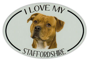 Oval Hund Rasse Bild Auto Magnet - I Love My Staffordshire (Terrier)