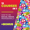 13 Cursos en 1: Conviértete en un profesional en marketing en redes sociales + b