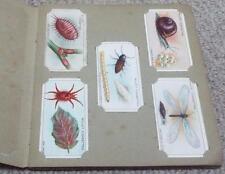 GARDEN LIFE - COMPLETE 1914 WILLS LOOSE CIGARETTE CARDS IN ALBUM