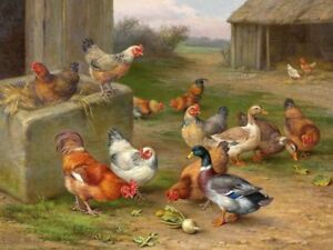 Home Wall Art Decor Chickens And Ducks Oil Painting Picture Printed On Canvas