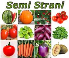 500 SEEDS in 12 VARIETY COLL. MIX FRUIT, VEGETABLE, AROMATIC HERBS