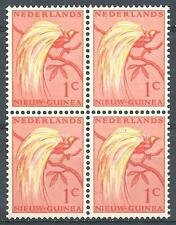 Netherlands New Guinea 1954 Sc# 22 Bird of paradise block 4 MNH