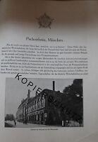 Pschorr-Bräu Brauerei München 8 Seiten Historie anno 1926 Werbung Bildbericht