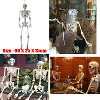 Poseable Full Life Size Human Skeleton Halloween Decoration Party Yard Prop
