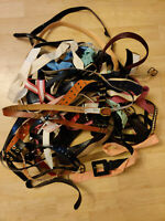 Lot Of 40 Womens Belts Wholesale Dockers, Lucky, Snake Skin, Absolutely Leather