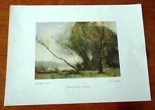 VINTAGE NGV PRINT JBC COROT 'THE BENT TREE' UNFRAMED C1960s RARE 25x18cms