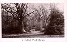 Hadley Wood, Barnet # 6.