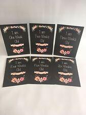 Baby Milestone Cards Vintage Chalkboard Floral Weeks Milestones Baby Shower Gift