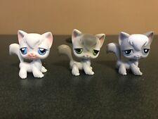 Littlest Pet Shop Lot 3 Angora Cats Grey White