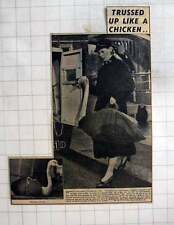 1954 Rspca Officer, Miss Phyllis Goodspeed, Helping Swan In Trouble Twickenham