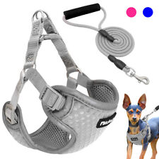 Step In Dog Harness&Leash Foam Handle Reflective Soft Padded Pet Puppy Vest Gray