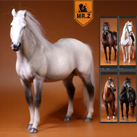 Mr.Z 1/6 Germany Hanover Horse Animal Model Figure Collector Toy Decoration Gift