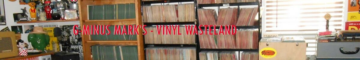 VINYL WASTELANDS