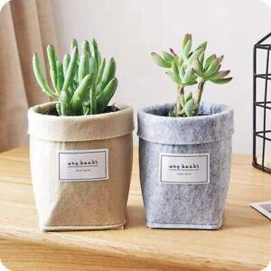 Plant Grow Bag New Home Decorations Desktop Flower Basket Fleshy Pot Garden